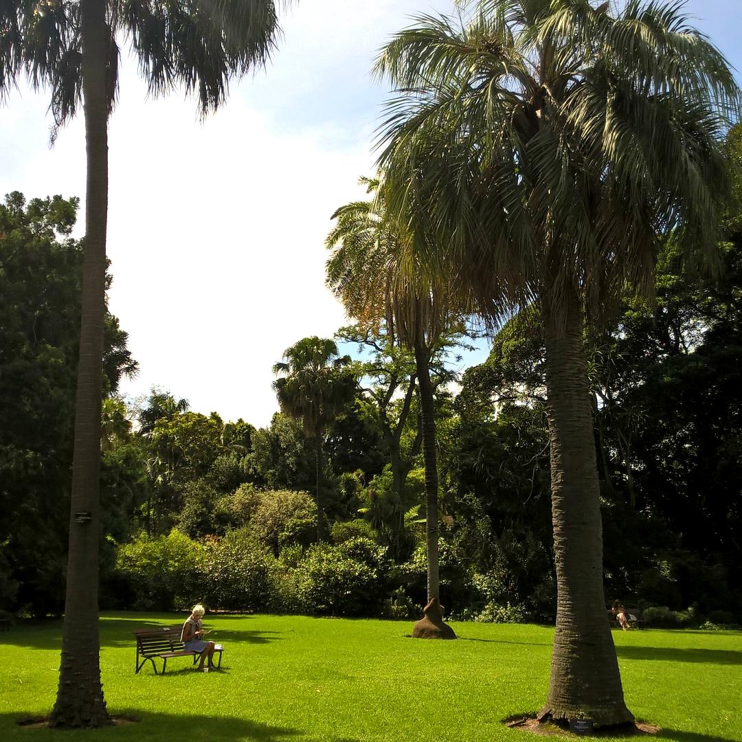 Ботанический сад Мельбурна