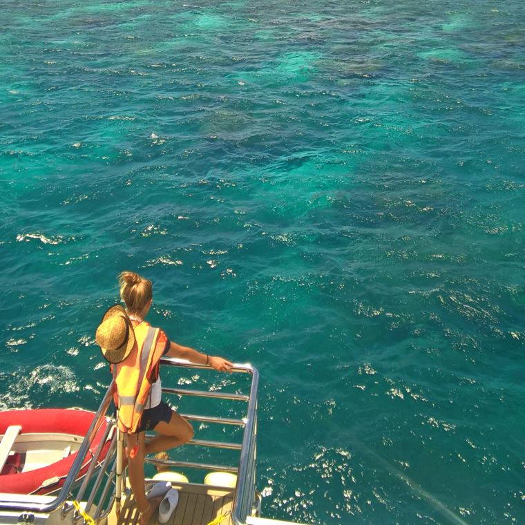 Большой Барьерный риф: успеть всё за один день