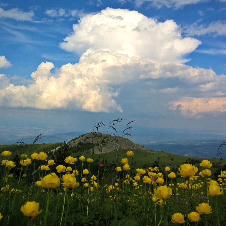 Горы, водопады, минеральные бассейны, монастыри и церкви: куда поехать на один день из Софии