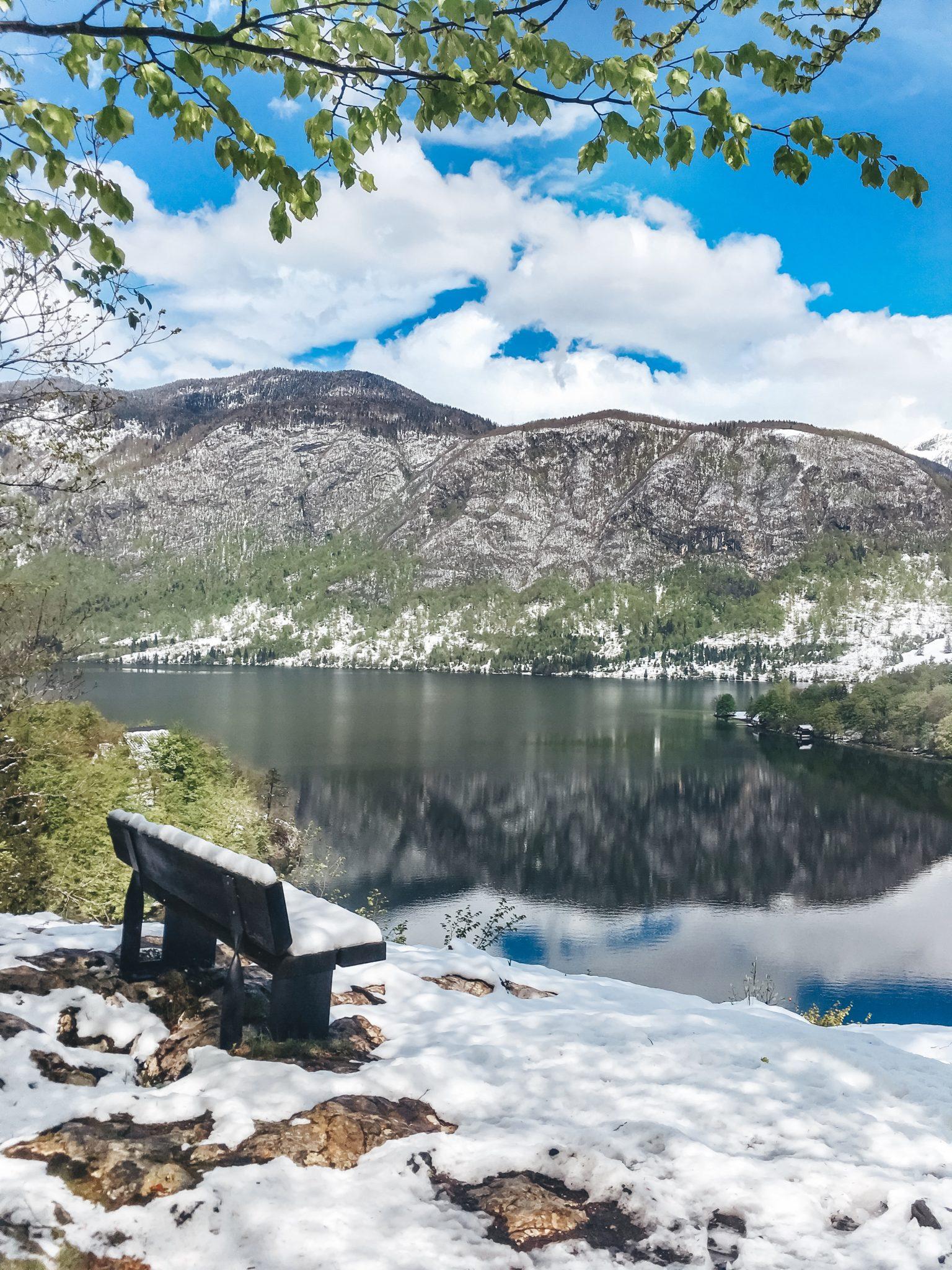 Виды со смотровой на озеро Бохинь, Словения