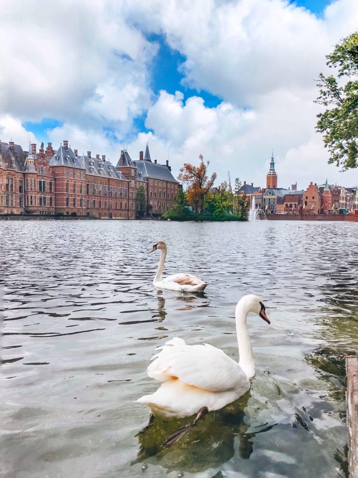Центр Гааги, Нидерланды