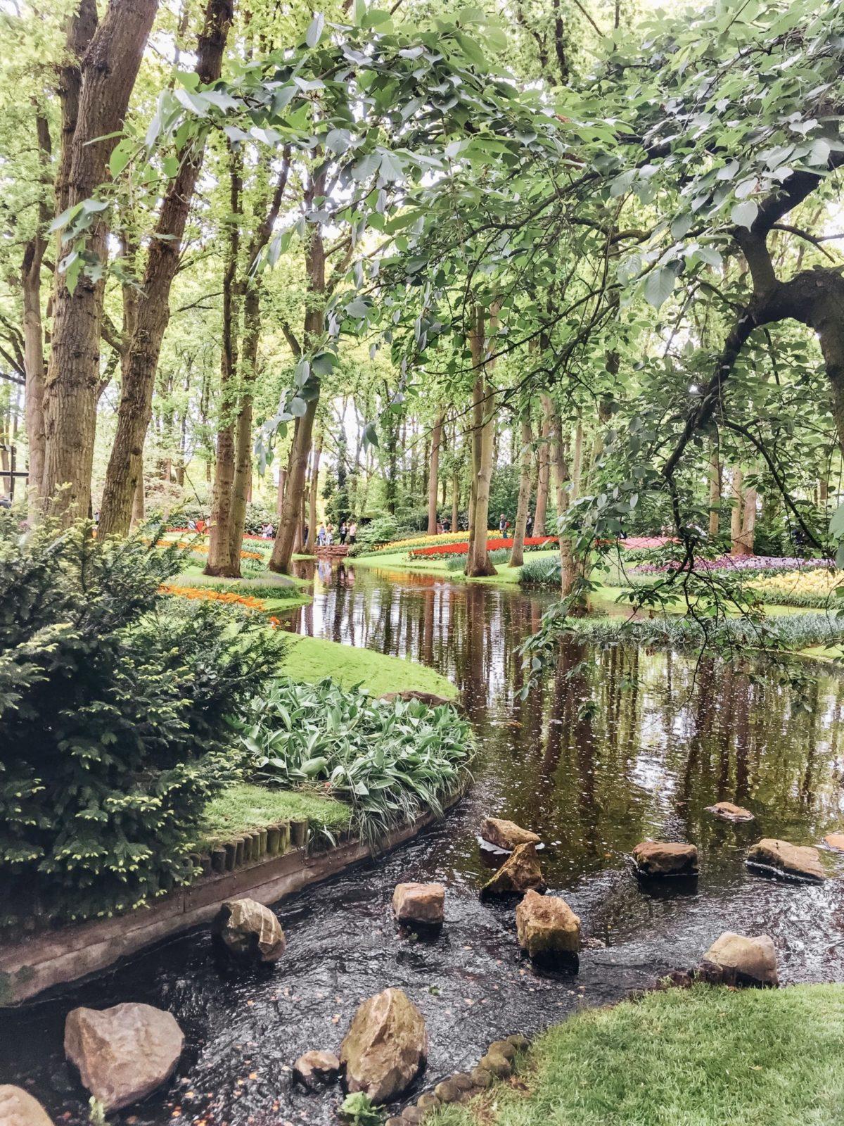 Парк Кёкенхоф, Нидерланды