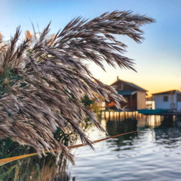 Неизвестное место в Венгрии — озеро Бокод